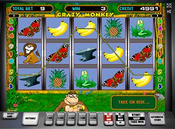 Игровой автомат Crazy Monkey - фото № 3